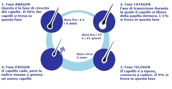 fasi capello MicroFue