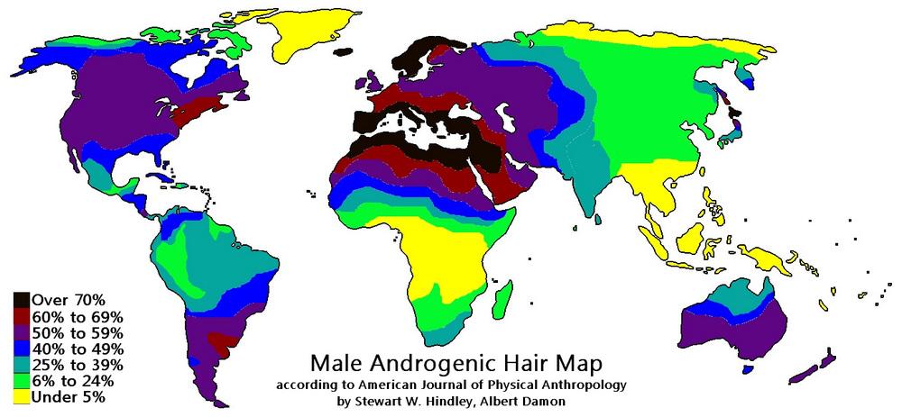uomini più pelosi del mondo mappa trapianto di capelli Microfue Turchia